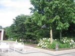 宇治市 植物園4