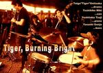 BurningBright1.jpg